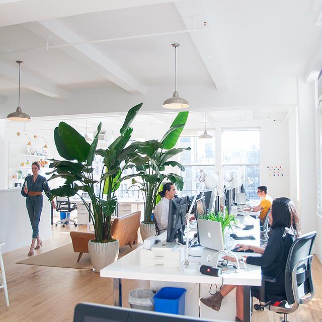 Why Choose Us - Office | netamorphosis - Digital Agency