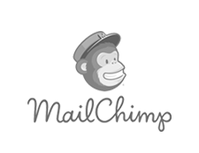 Services - Analytics Consulting - MailChimp | netamorphosis