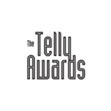 Recognition - The Telly Awards - Online Commercial Campaign | netamorphosis - Digital Agency