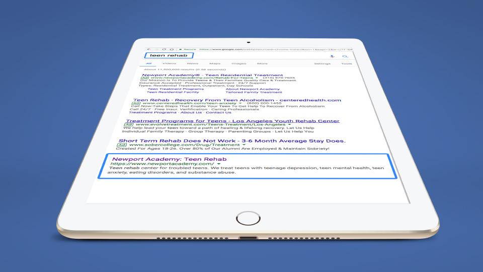 netamorphosis | Newport Academy - Google Results