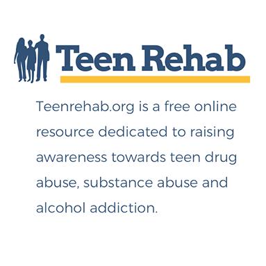 netamorphosis | Teen Rehab - Description